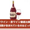 乳酸菌が含まれているワインは?白ワイン・赤ワインどっちが良い?