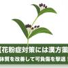 花粉症を撃退する体質改善には食べ物から!漢方薬も効果的?