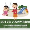 <ハルガヤ花粉症の2017年>飛散予想時期!ピーク予測は?