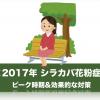 <2017年シラカバ花粉症>の飛散時期はいつまで?ピークは何月?