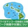ハワイ,マンゴー花粉症,時期,ピーク情報